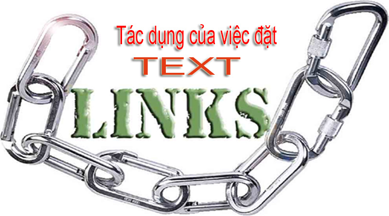 mua-text-link-gia-re-o-dau