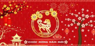Lịch nghỉ tết tại backlink.com.vn